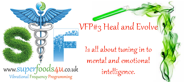 VFP#3-Heal and Evolve